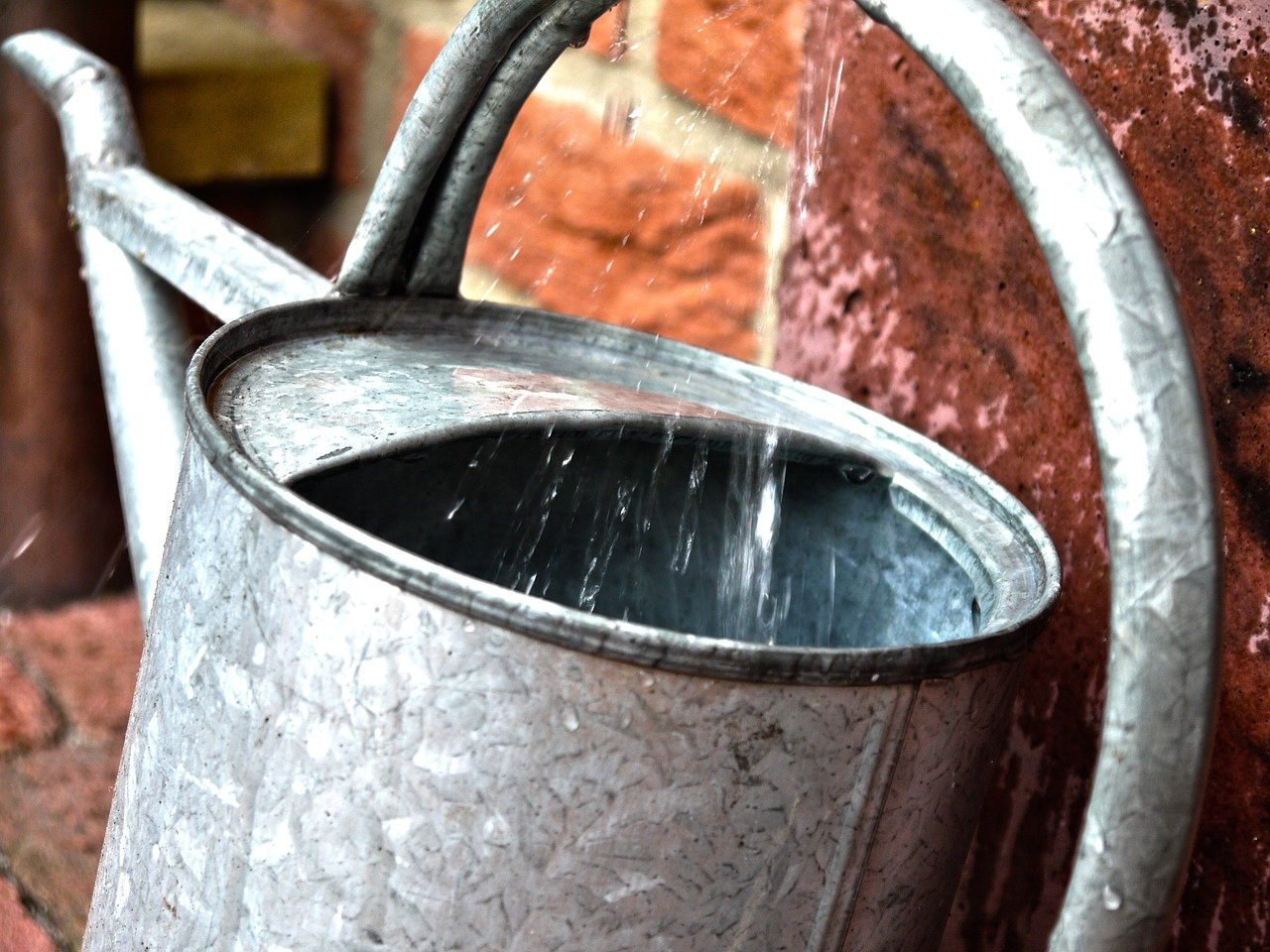 watering-can-823866_1280