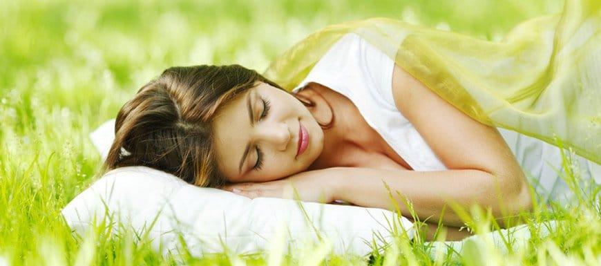 Lit bio les mati res naturelles de a s guide de la - Autrefois utile pour faire chauffer un lit ...