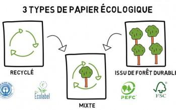 Papier écologique : comment choisir