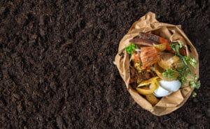 compost composteur